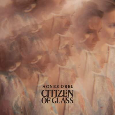 Agnes Obel - Citizen Of Glass (2016) FLAC