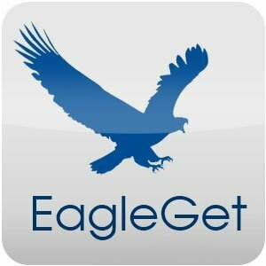 EagleGet 2.0.4.20 Stable (2016) PC